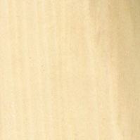 DZD-Hardwood: yellow poplar